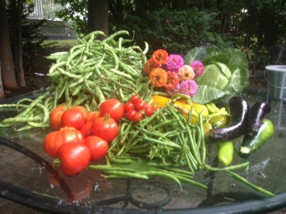 More Garden Bounty